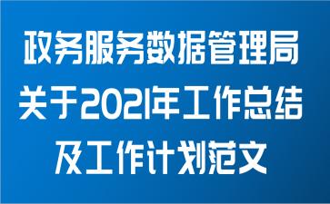 政务服务数据管理局关于2021年工作总结及工作计划范文