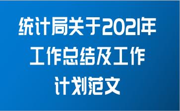 统计局关于2021年工作总结及工作计划范文