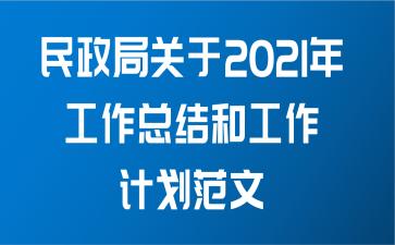 民政局关于2021年工作总结和工作计划范文